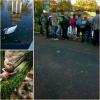 2017.10.19 - Park Strzelecki - kl. 2a